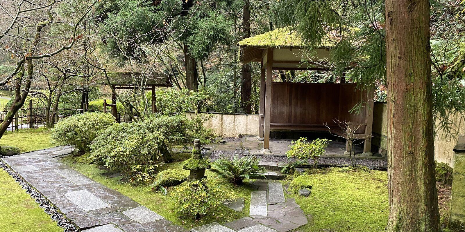 12.28.20_Tea Garden